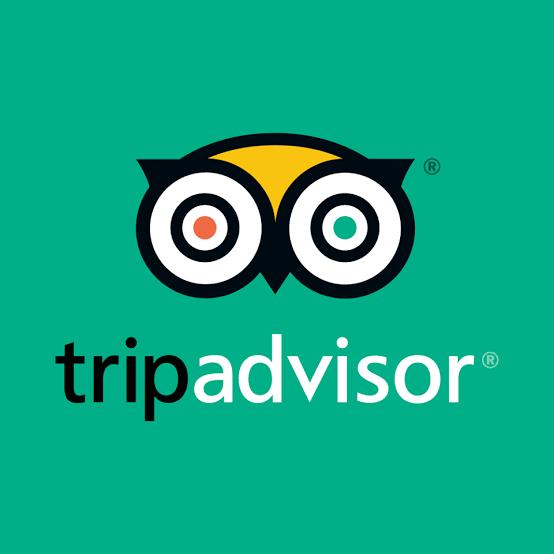 Tripadvisor Pitahaya Travel